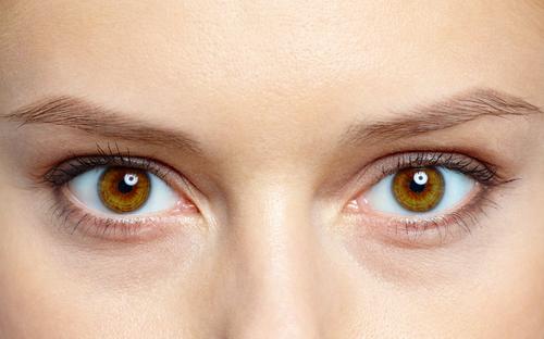 Lacrimal Glands